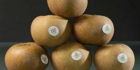 Manzana reineta: producto Denominación de Origen