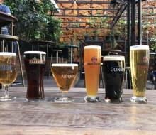 Cata multitudinaria de cerveza
