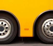 Vinobús: Enoturismo sobre ruedas