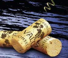 XVI Feira do Viño de Valdeorras (Ourense)
