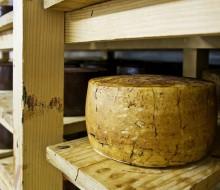 Consejos para conservar el queso
