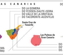 Catas«exprés» de vinos en el aeropuerto de Tenerife-Sur