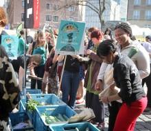 Nueva York contra el desperdicio alimentario