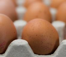 El desplome del precio del huevo
