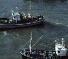 El conflicto en la pesca de cerco