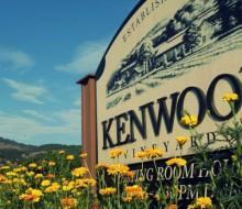 Pernod Ricard compra Kenwood Vineyards