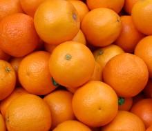 Las frutas del invierno