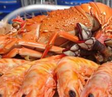 ¿Cómo preparar el marisco?
