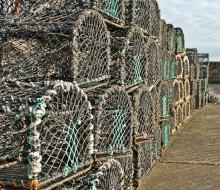 Europa sube un 20% las aportaciones a la pesca española