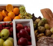 'Nutrición. Impulso vital' en Granada