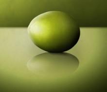 El aceite y sus variedades según la oliva