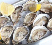 15.000 ostras en Noalla