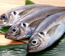 Menos pescado en nuestras mesas