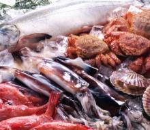 Premio a la promoción del pescado