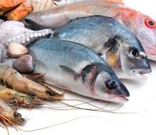 ¿Cómo elegir bien un pescado?