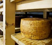 España premia sus mejores quesos