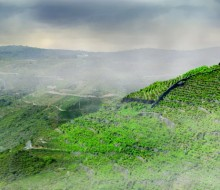 Los 7 mejores vinos de Ribeira Sacra