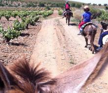 Primavera Enogastronómica en Ribera del Guadiana