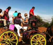 Expertos en turismo se rinden a los encantos enogastronómicos