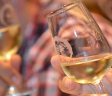 250 vinos para 1.000 paladares