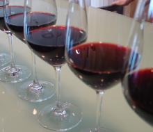 Wine and Win, una nueva forma de mostrar lo que sabes de vino