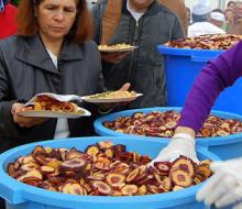 IX Fiesta de la Zanahoria Morá en Málaga