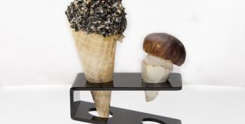 Setas Marineras y Trampantojos micológicos