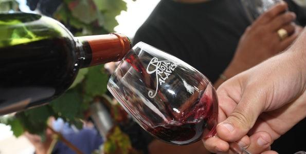 Encuentro Enogastronómico Sostenible Rioja Alavesa