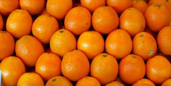 Jornada de la Naranja del Valle del Guadalquivir