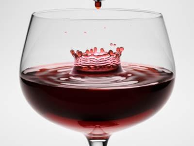 El placer del vino a estudio desde hoy en la UEMC de Valladolid