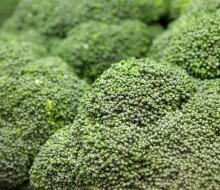 Brócoli contra los resfriados