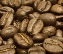 El origen del café