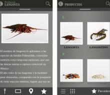 Aprende sobre gastronomía mexicana desde tu iPhone