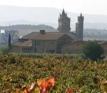 MURUA: Vinos esculpidos con mimo