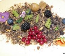 Gastronomía y bosques sostenibles