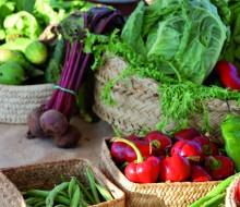 Foro Profesional de Gastronomía del Mediterráneo