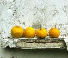 ¿A qué hora debemos comer fruta?
