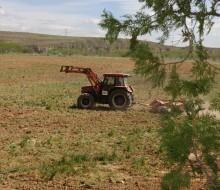 La renta agraria crece un 7,7%