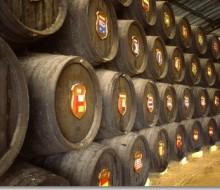 Ochenta años de unos vinos milenarios