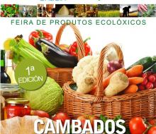 Ecological Galicia: productos ecológicos y responsables
