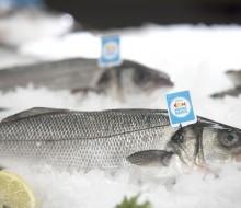 """Consumir pescado de """"proximidad"""""""