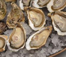 Mes de las ostras en el Ritz de Madrid