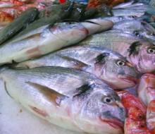Pescados y mariscos de temporada de otoño