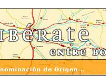 La Ribera del Duero renueva el certificado como Ruta del Vino de España