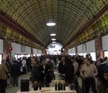 IV Salón de las Estrellas del vino