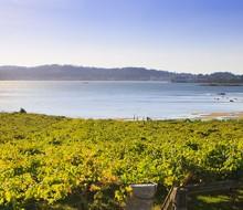 Atlante Wine Forum